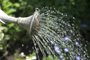 SADL eau récupération